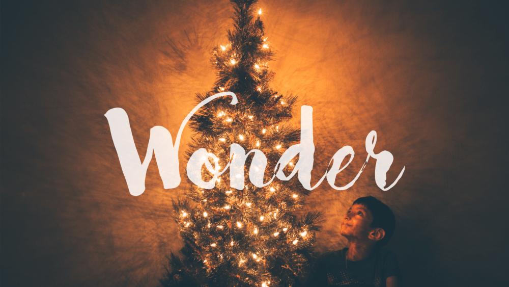Wonder #2