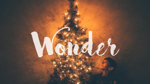 Wonder #1 Image